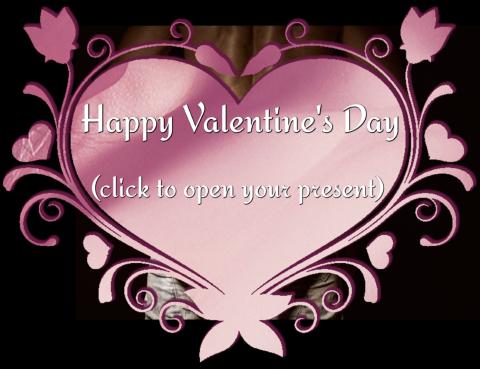 Valentine's Day Present1